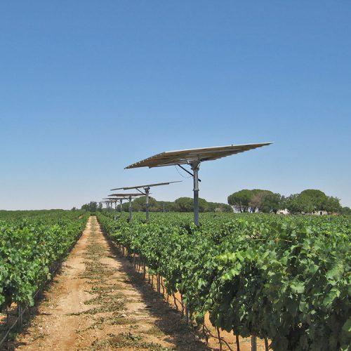 Proyecto Solar Riego